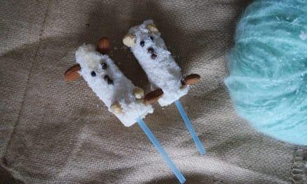 Gezonde schaapjes voor de kids
