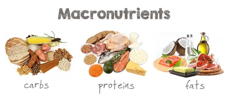 macronutriënten
